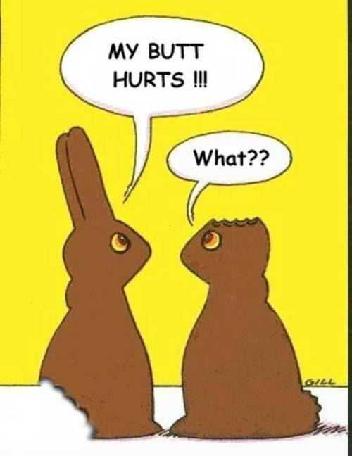 easter choc bunnies